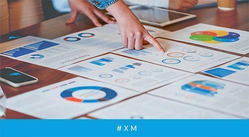 When Data Drives Experience. Experience Management in deutschen Unternehmen