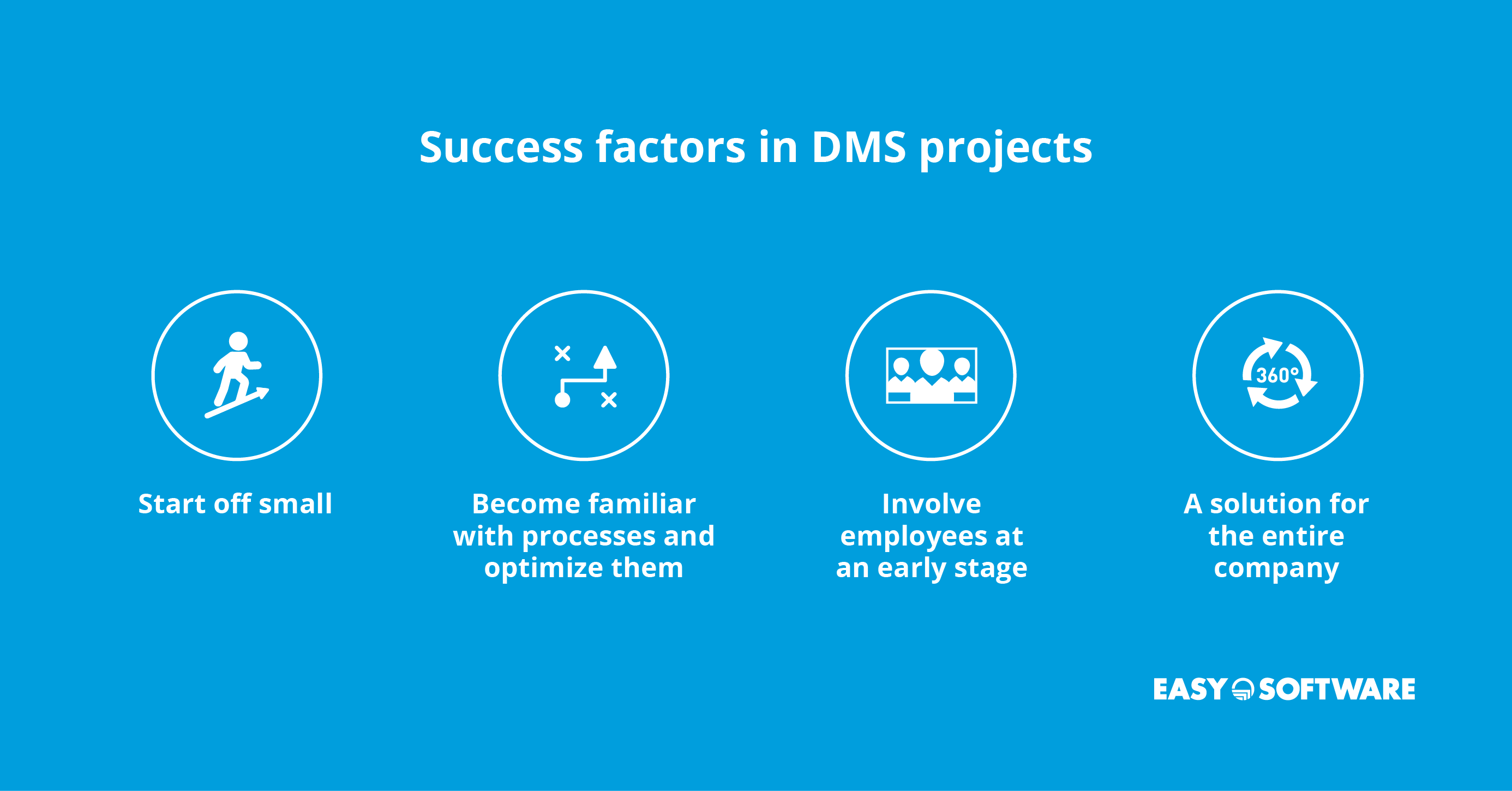 success factors in DMS projects